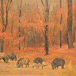 Dziki w bukowym lesie