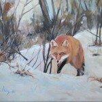 Lis na polowaniu