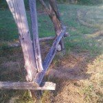 Zakrzaczenia i trawy - wróg nr 1 podstawy ambony