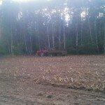 Przenosiny zwyżki na rżysko kukurydziane