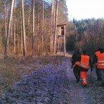Ambona przy nęcisku na leśnej linii oddziałowej